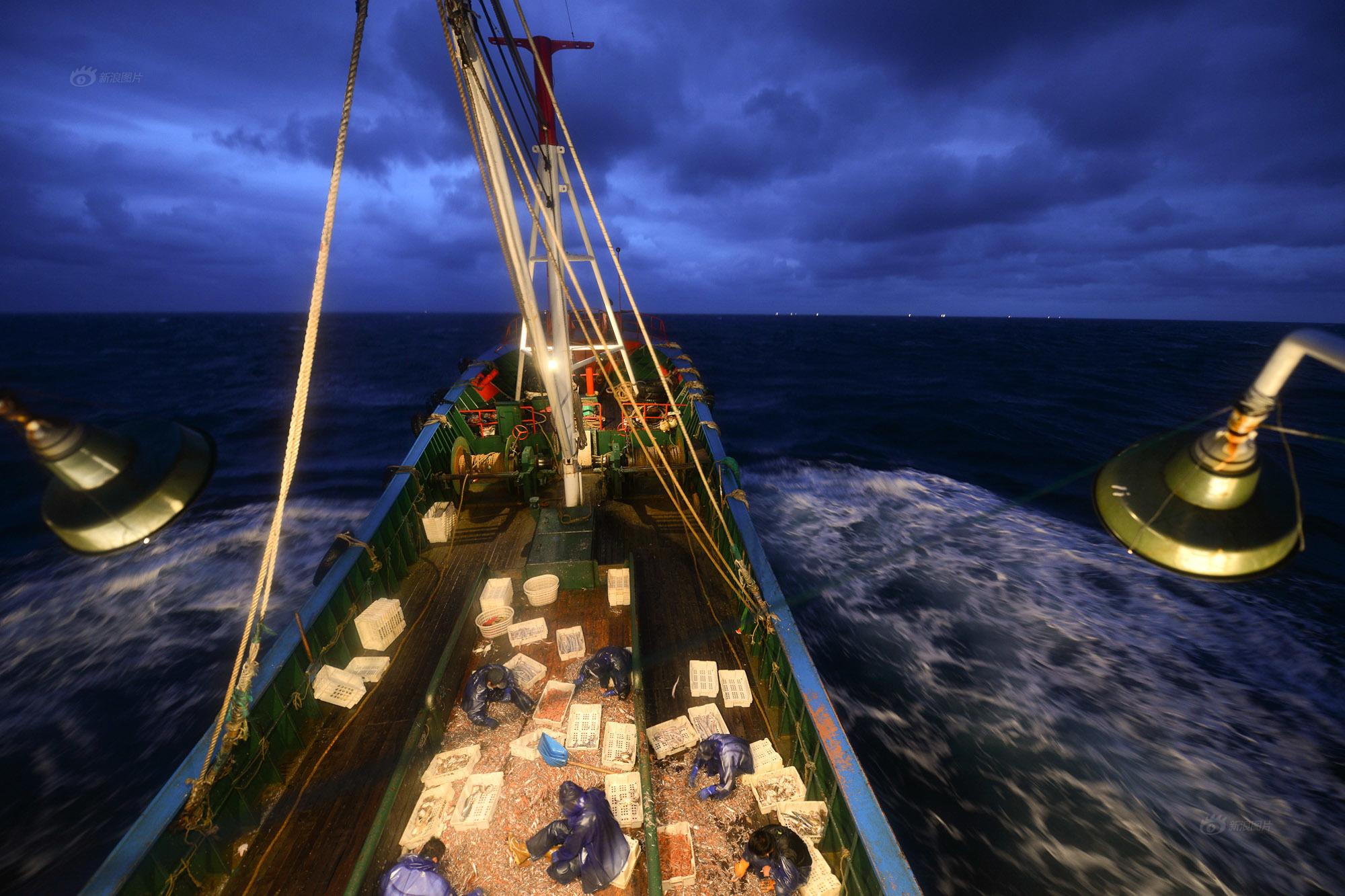 图/文 李颀拯   东海开渔后,从2014年9月16日到10月25日,罗胜概驾渔船从浙江石浦港出发,共出海4趟,作业31天。航程约6700海里,捕鱼102吨,获利约29万元。但罗船长粗粗一算,扣去航行柴油费26.3万,人工工资8.5万,还没算其他费用,这一个月就已经亏了5.8万。   在卸渔获的码头上,罗胜概夹在船员中,一边搬运,一边不停地催着工人们快点,快点他要趁着这几日的风平浪静,赶下一个航程,多下几网。   今年45岁的罗胜概,已从事远洋捕捞26年。从机电技校毕业后,他就上渔船跟着船老大学开船