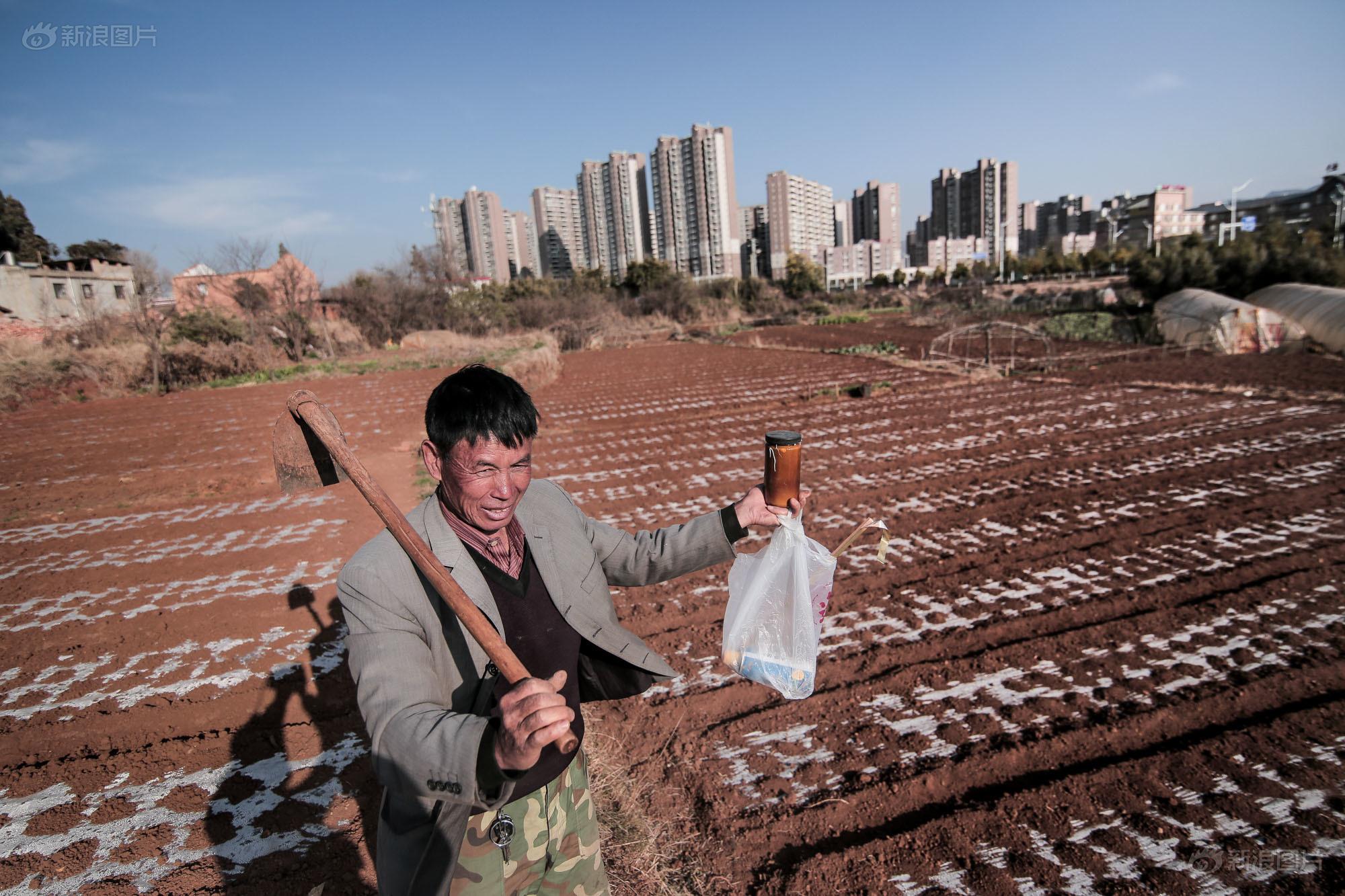 王先生走过从前村里的一片田地,这里原本有着大片蔬菜和鲜花基地,随着新城建成,仅存的田地也由其他单位接管了。至于土地将会如何使用,他都不太清楚。